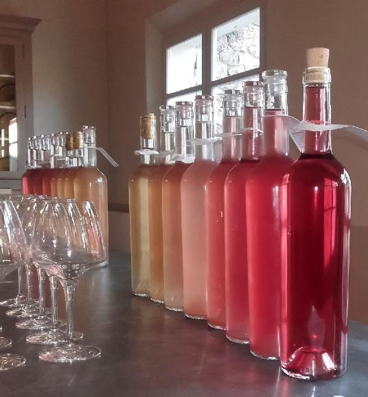 vin rosé et rouge de Provence
