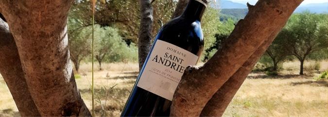Domaine Saint Andrieu vin Rouge